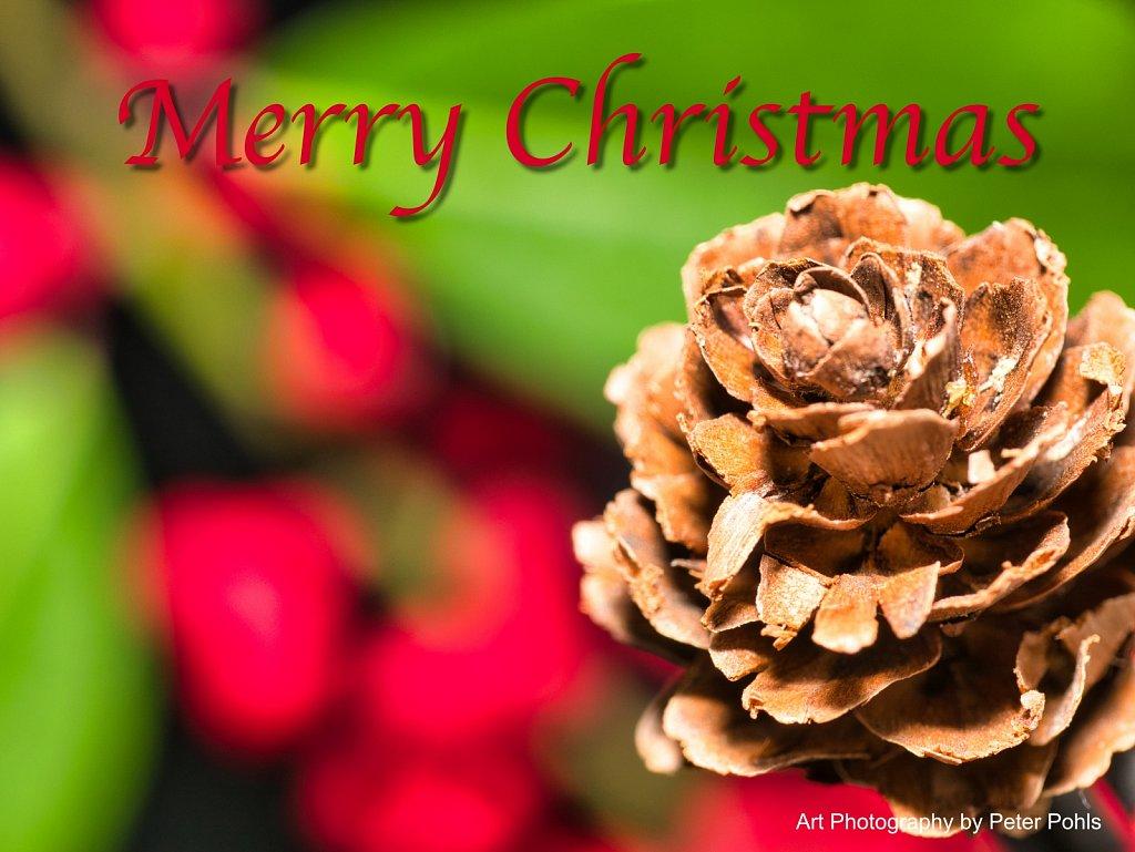 Castanuela-Christmas-Card-ready.jpg