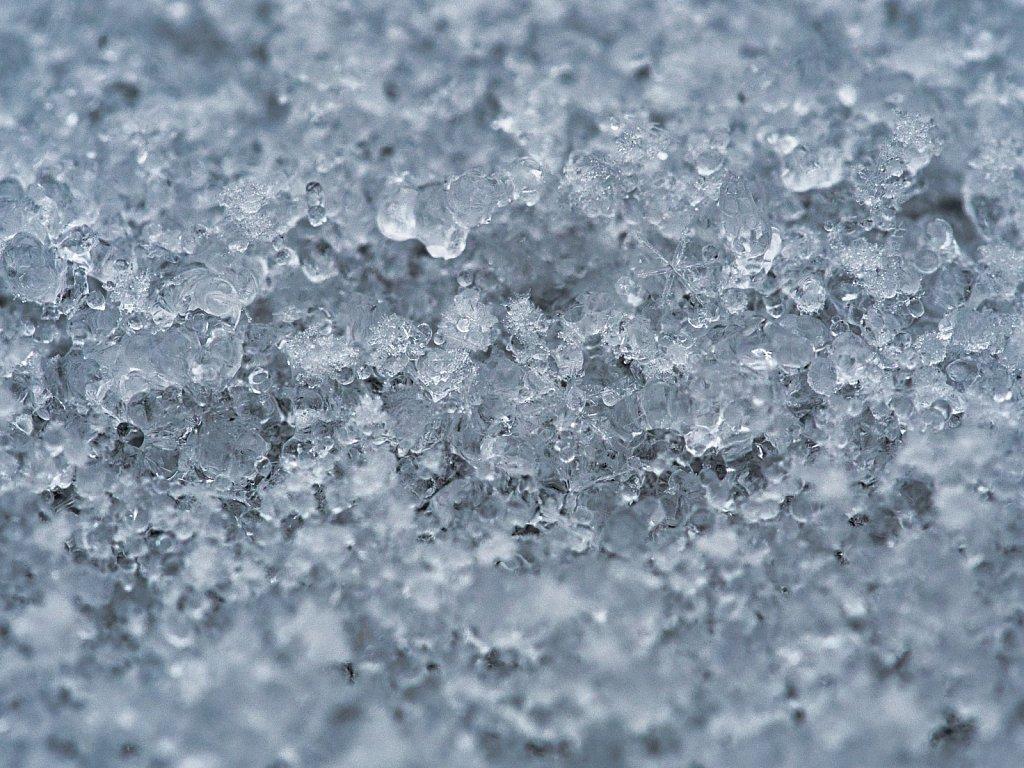 Snow-Flakkes.jpeg