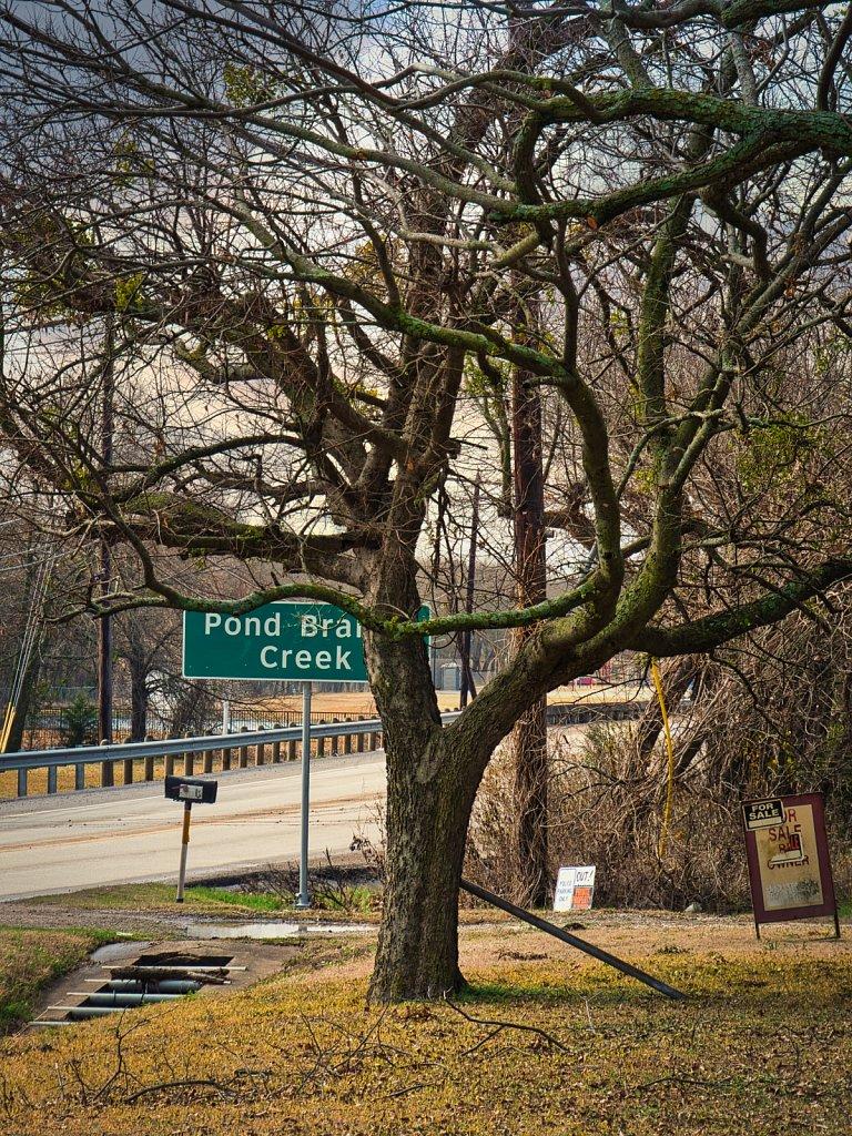 Royce-Cuty-Pond-Brain-Creek-TX.jpeg